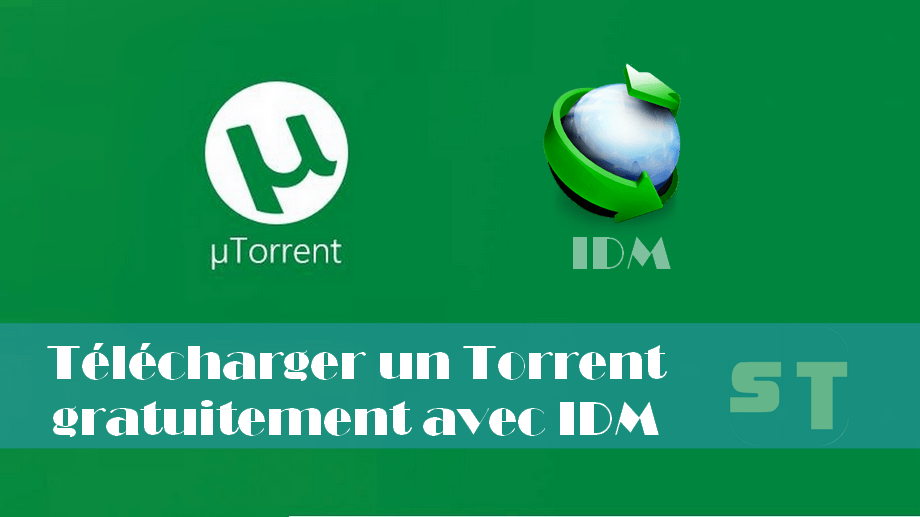 top 5 moyens pour t l charger un torrent avec idm sans utorrent. Black Bedroom Furniture Sets. Home Design Ideas