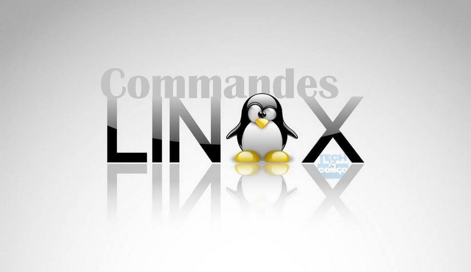 top commandes linux Top 15 Commandes Linux que tout Webmaster doit connaitre
